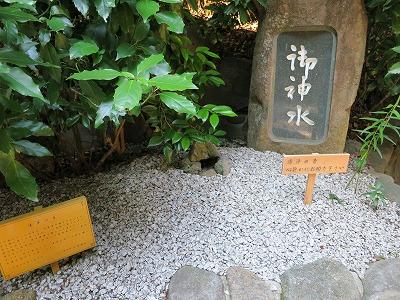 大神神社  (13)