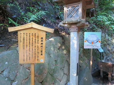 大神神社  (12)