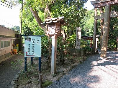 大神神社  (9)