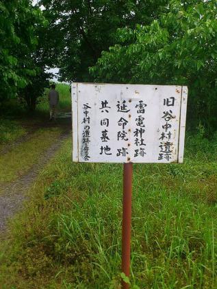 渡良瀬遊水池1
