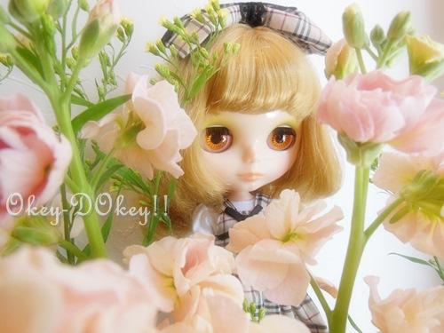 DSCN3003.jpg