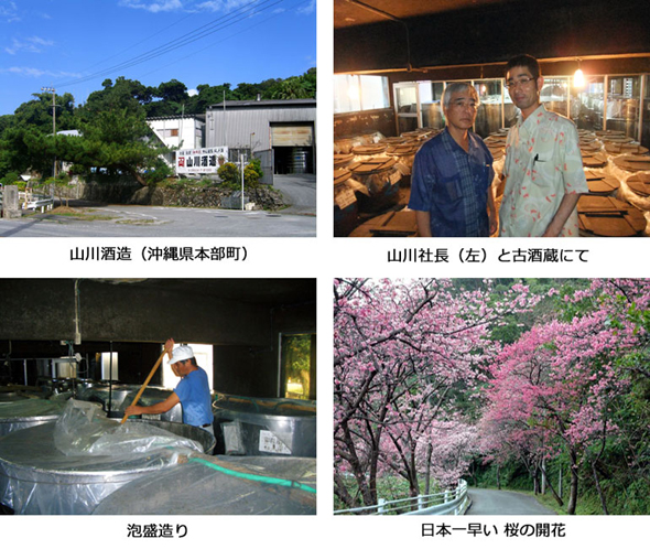 山川酒造所