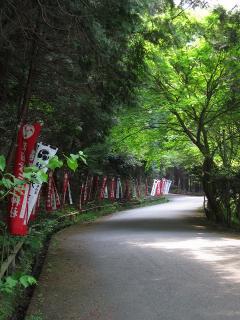 林道鷲ヶ峯線