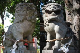 天子神社の狛犬
