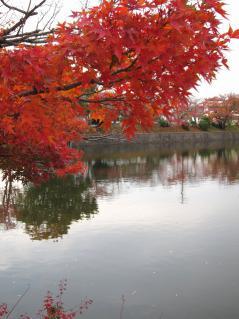 東楽園(柱大池)の紅葉