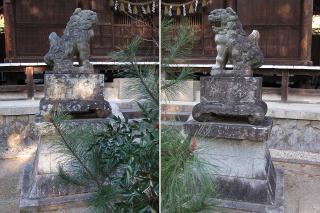 関山神社の狛犬