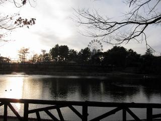 南公園 西三田ヶ入池