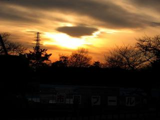 南公園 夕日