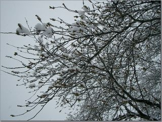 なごり雪 2 32.jpg