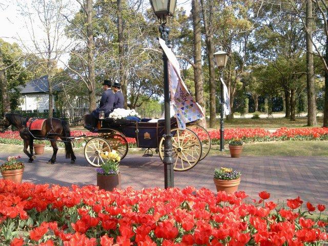結婚式の馬車