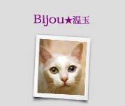 Bijou★温玉