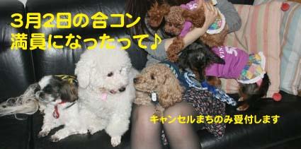 002_20120.jpg