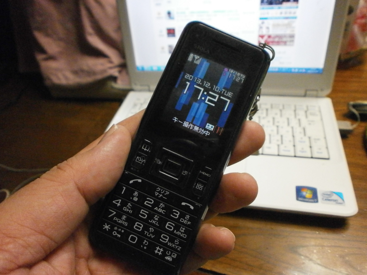 PC100261.jpg