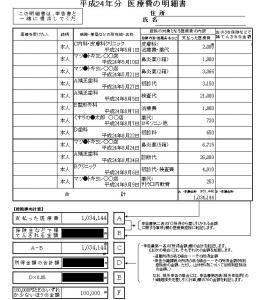 医療控除(医療費の明細).