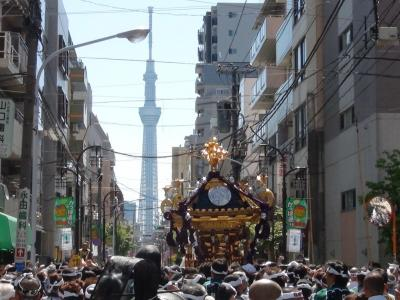 お神輿と東京スカイツリー
