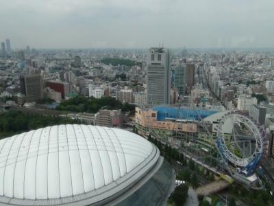 東京ドームを望む