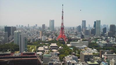 東京タワー 六本木方面