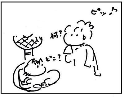 201208053.jpg