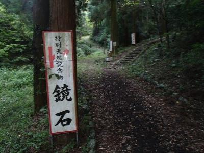 きんさな (5)