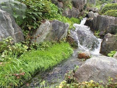 親しい水 (4)