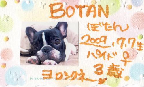 BOTAN.jpg