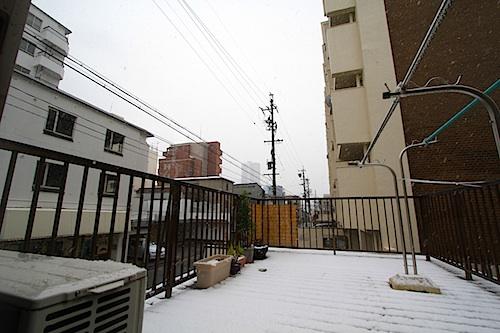 20121228_2.jpg