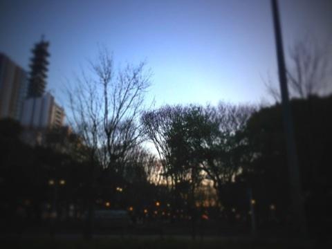 image_20121222221112.jpg