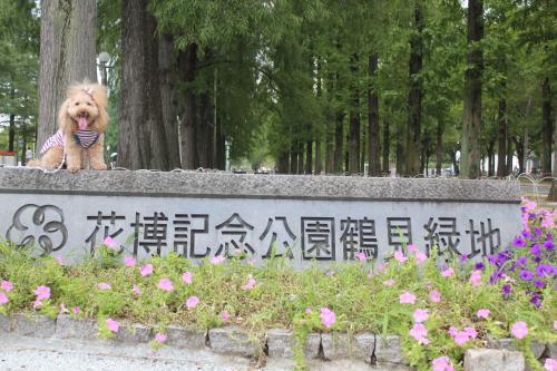 鶴見緑地フリマ