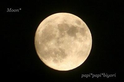 Moon☆