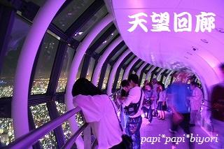 445m 天望回廊