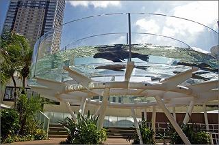 sunshine aquarium ★