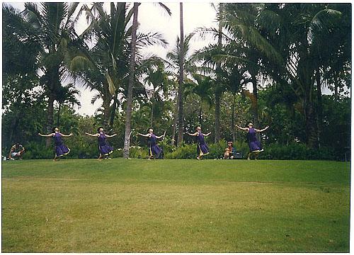 hula zanmai 4