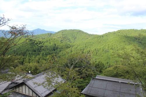 0909 yosino