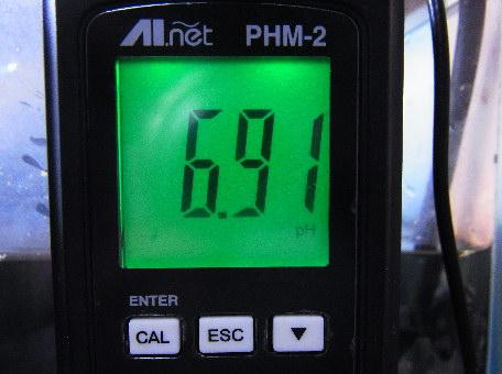 RIMG3744a.jpg