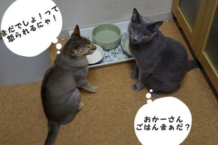 http://control.blog.fc2.com/