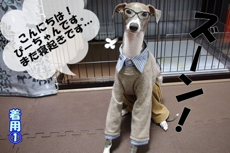 http://peesaurus.blog.fc2.com