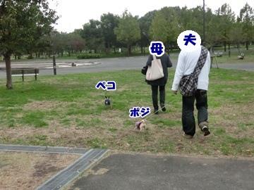 CIMG0740.jpg
