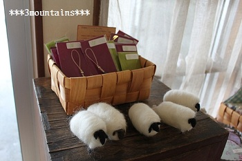 Sheeps Oneday Shop (1)