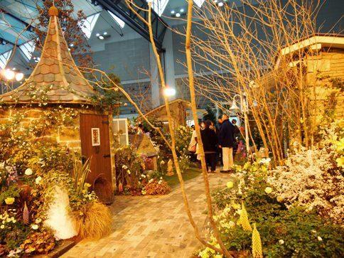 my-garden 044 (3)