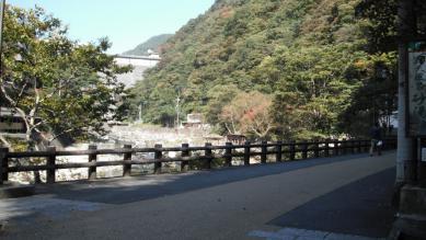 20_daihiru