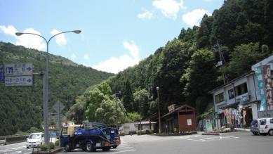 23_oosugi