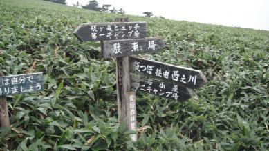 35_kamega