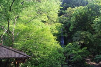 39_R439nagasawa