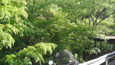40_R439nagasawa