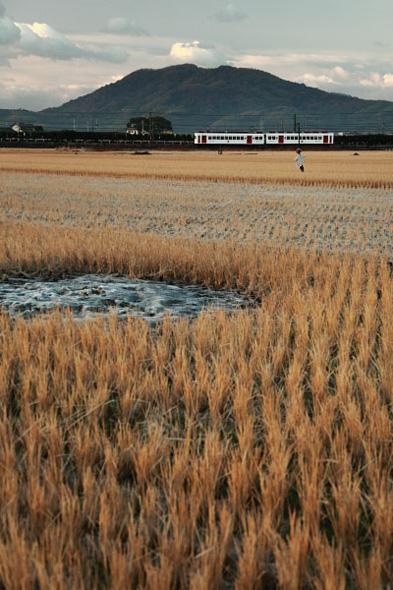 2008年12月下旬 和歌山電鐵貴志川線 竈山~交通センター前