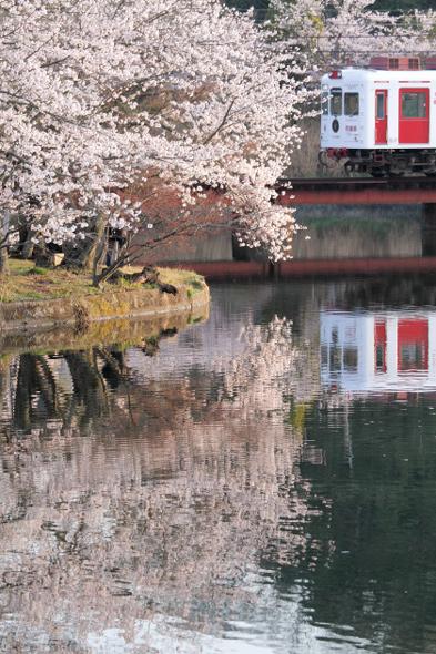 2013/4/1 和歌山電鐵貴志川線 大池遊園