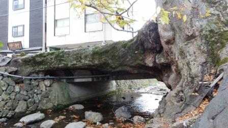 柏原 木の根橋