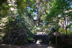1116 亀山城