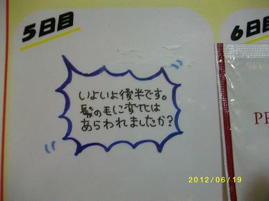 IMGP5083.jpg
