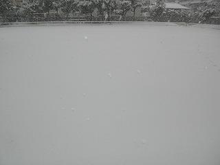 snow3_130114.jpg